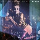 Who Am I Working For (Remix)