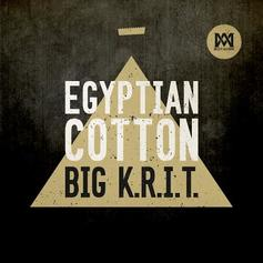 Egyptian Cotton