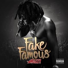 Fake Famous