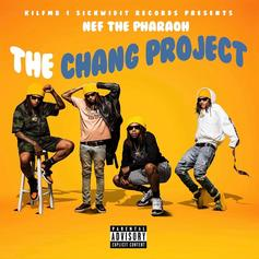 The Chang Project [Album Stream]