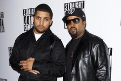 Ice Cube Stops Show When Fight Breaks Out