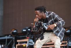 Steez Day Line-Up Includes Pro Era, ASAP Mob, Danny Brown & More