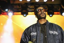 """Snoop Dogg Criticizes """"Roots"""" Reboot: """"I Don't Understand America"""""""