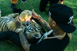 Tyga Criticized For Neglecting His Pet Tiger