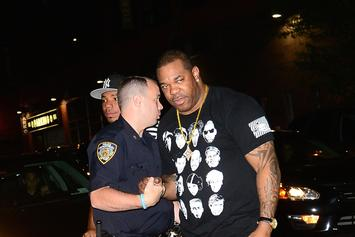 Busta Rhymes Is Under Investigation For Allegedly Threatening To Slap A Fan