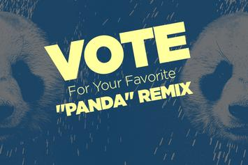 "Vote For Your Favorite ""Panda"" Remix"