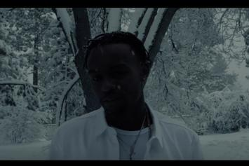 "Rob $tone ""Already Dead"" Video"