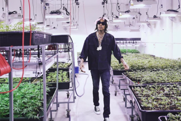Wiz Khalifa Releases Weed Farm App In Celebration Of 4/20